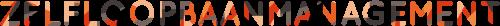 cropped logo zelfloopbaanmanagement